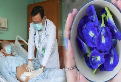 Sυýt hỏng ƫʜậɴ vì dùng hoa đậu biếc: Nhiều người vẫn dùng mà không biết là cực ⱨại